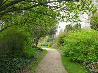 Botanic Garden Cambridge UK april 2012