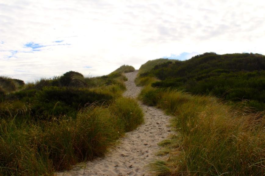 IMG_5709 dunes