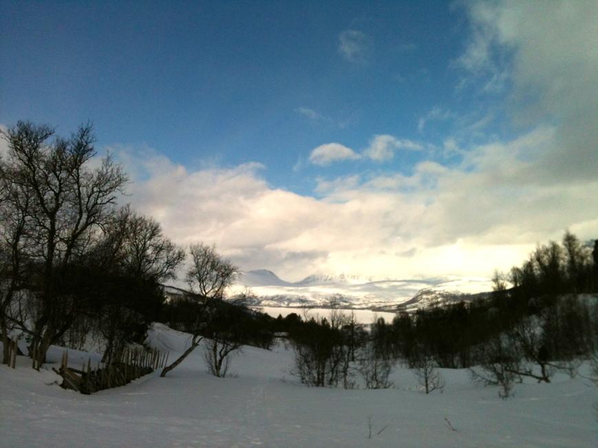 IMG_0204 winter 2