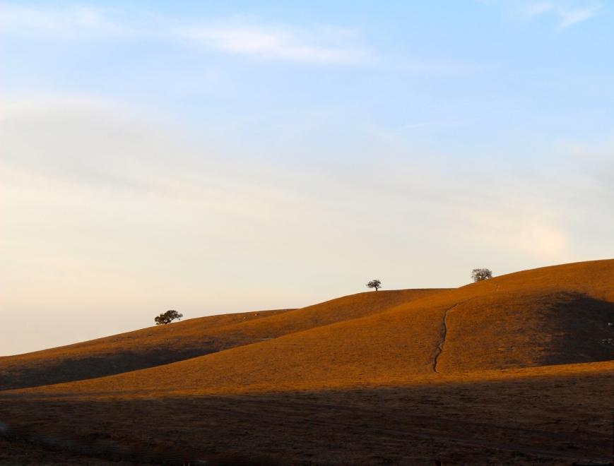 IMG_1168 retusj golden hills2