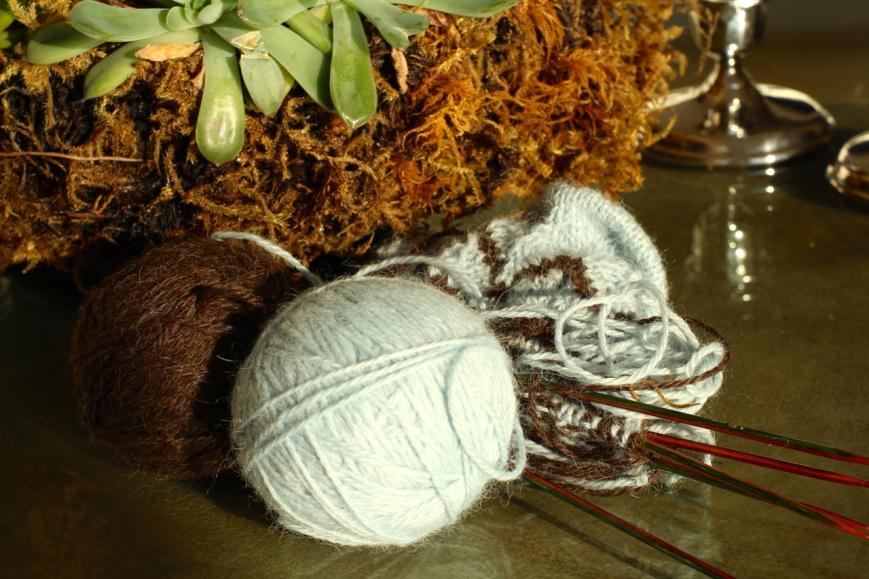 IMG_1907 knitting