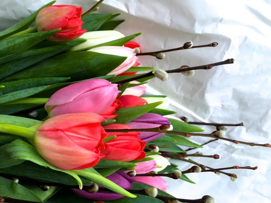 tulipaner t+j